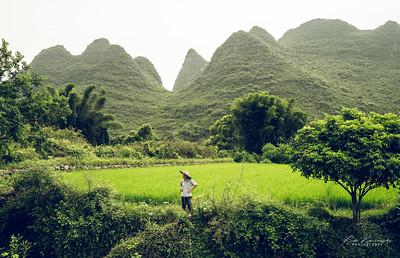 Dans la campagne de Yangshuo
