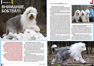 """Monthly magazine """"Friend"""" №3 2012  Журнал """"Друг для любителей собак"""" №3 2012"""