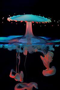 Actie boven en onder het wateroppervlak