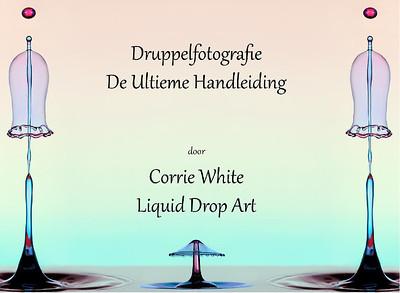 Cover-afbeelding van mijn boek