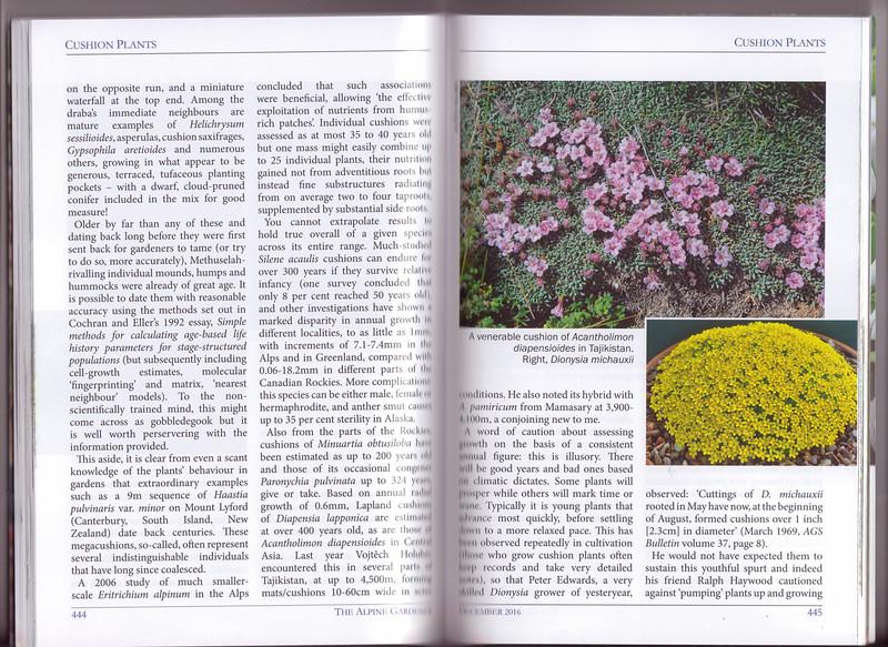 Cushion Plants, AGS