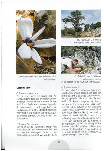 Autumn in Southwest Turkey (NRV No. 93 November 2008 p. 18)