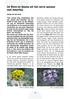 De flora en fauna uit het verre westen van Amerika.<br /> Folium Alpinum  106, page 39 Mei 2012
