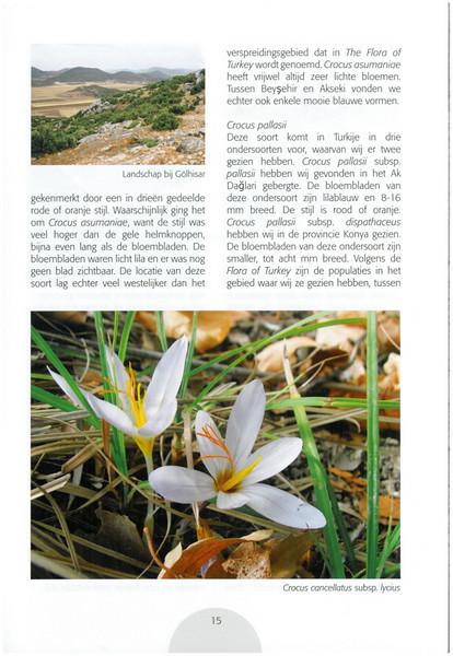 Autumn in Southwest Turkey (NRV No. 93 November 2008 p. 15)