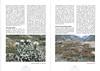 De hooggebergte flora van de Karakorum NRV Folium Alpinum 105, page 30/31 februari 2012