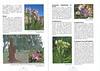 De herfstbloeiende flora van NW Marocco (Folium Alpinum 101, Februari 2011) p. 34-35