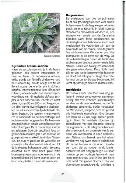 Tenerife, Christmas and Newyear planthunting  (NRV No. 94 Februari 2009 p. 24)
