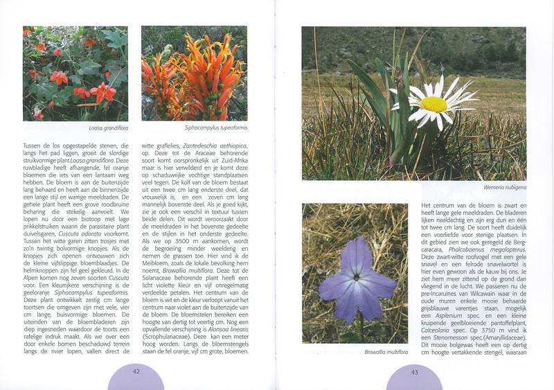 De flora van de Cordillera Blanca (Noord Peru)