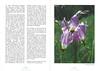 De flora en fauna van Zuidwest America. NRV. Folium Alpinum 107, Augustus 2012 pag.16-17