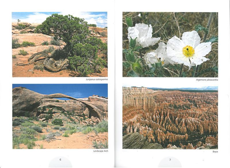 De flora en fauna van Zuidwest America. NRV. Folium Alpinum 107, Augustus 2012 pag.6-7