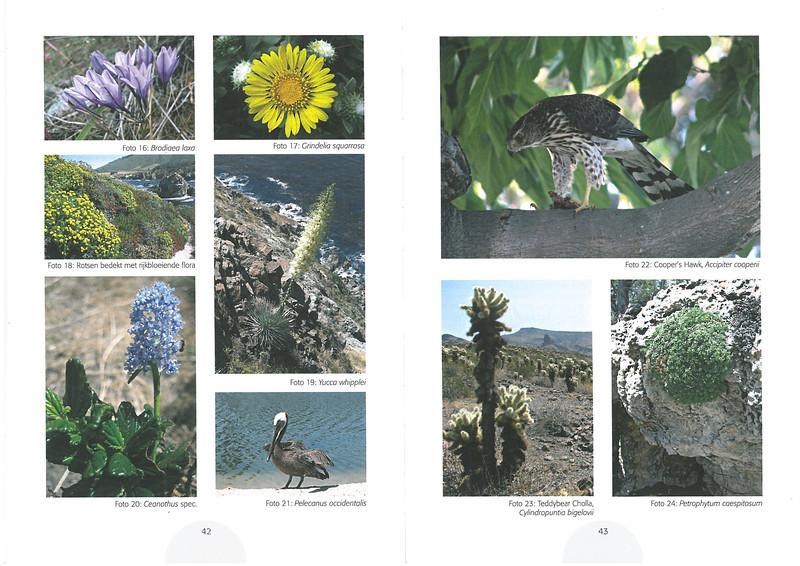 De flora en fauna uit het verre westen van Amerika.<br /> Folium Alpinum  106, page 42/43 Mei 2012