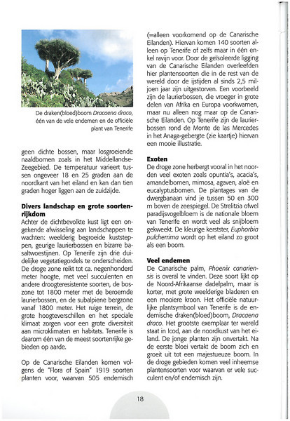 Tenerife, Christmas and Newyear planthunting  (NRV No. 94 Februari 2009 p. 18)
