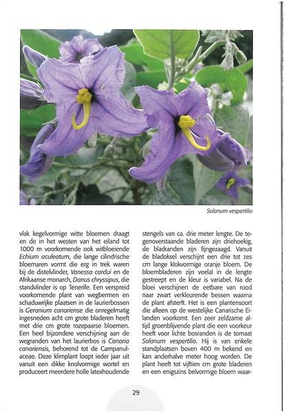 Tenerife, Christmas and Newyear planthunting  (NRV No. 94 Februari 2009 p. 29)