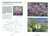 Een voorjaarsronde door Noordoost-Turkije (NRV No 98 Februari 2010) p. 26 - 27