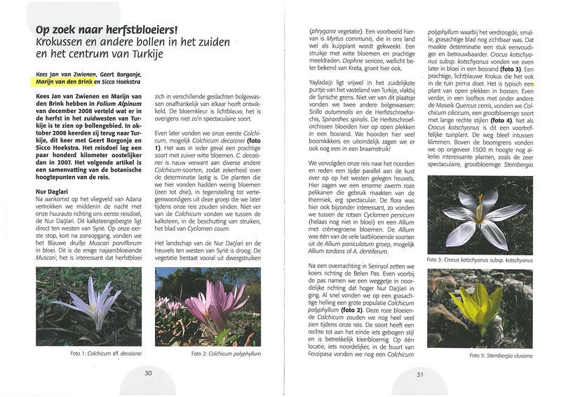 Op zoek naar herfstbloeiers. Centraal en zuid Turkije.<br /> Folium Alpinum 106, page 30/31 Mei 2012