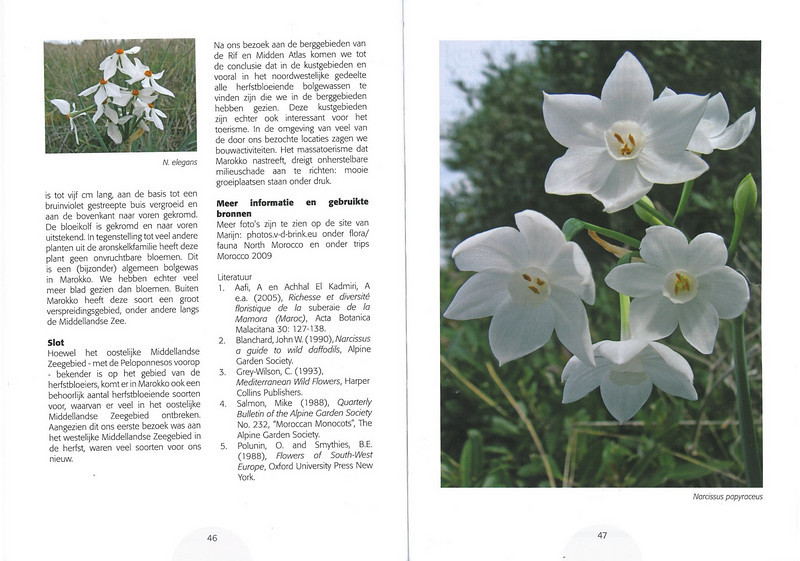 De herfstbloeiende flora van NW Marocco (Folium Alpinum 101, Februari 2011) p. 46-47