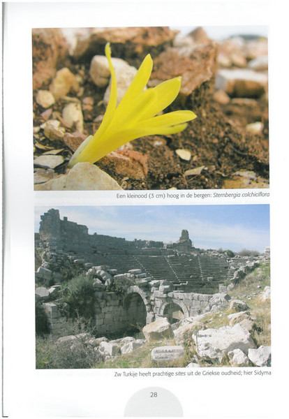 Autumn in Southwest Turkey (NRV No. 93 November 2008 p. 28)