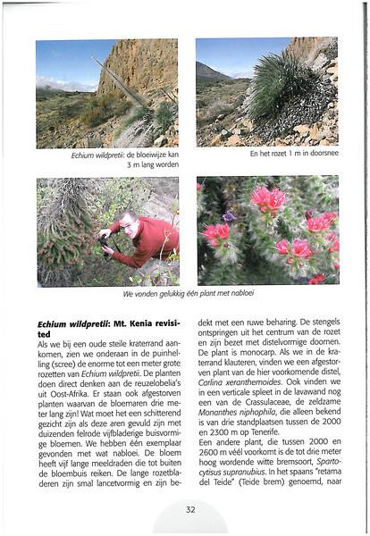 Tenerife, Christmas and Newyear planthunting  (NRV No. 94 Februari 2009 p. 32)