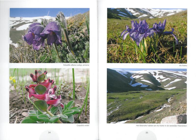 Een voorjaarsronde door Noordoost-Turkije (NRV No 98 Februari 2010) p. 34 - 35