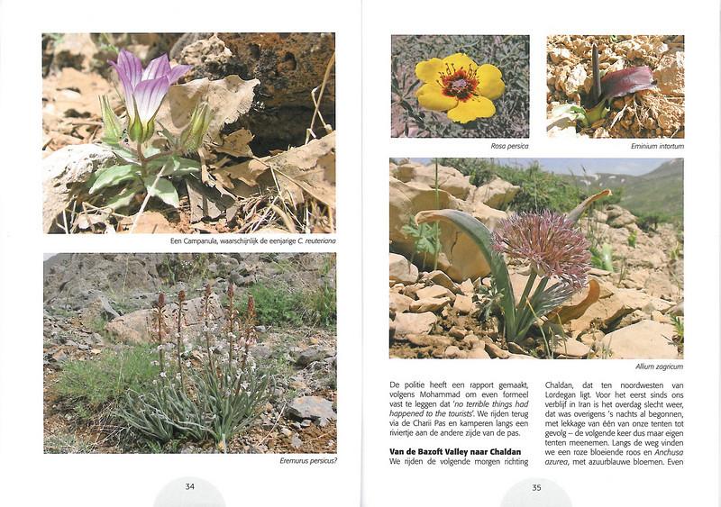 Plantenreis door Iran (NRV Folium Alpinum No. 95 May 2009 p. 34–35)
