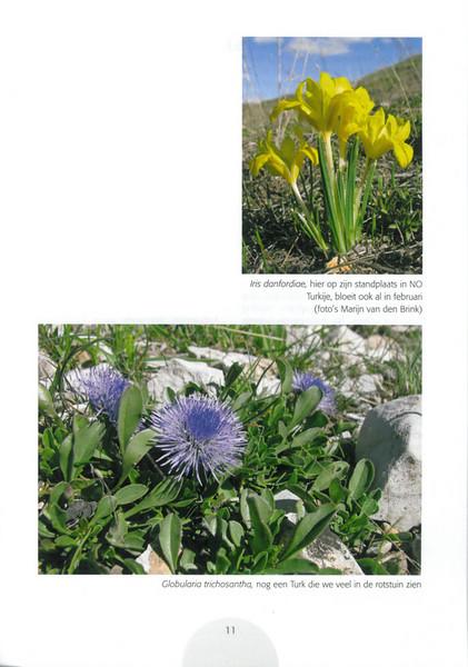 Een voorjaarsronde door Noordoost-Turkije (NRV No 98 Februari 2010) p.11