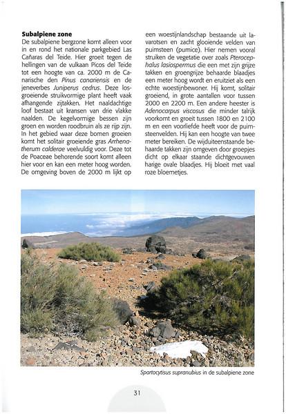 Tenerife, Christmas and Newyear planthunting  (NRV No. 94 Februari 2009 p. 31)