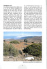Tenerife, Christmas and Newyear planthunting  (NRV No. 94 Februari 2009 p. 31)