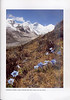 Autumn at the Mount Everest (NRV, No. 88, Aug 2007, p. 27)