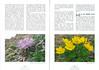 Een voorjaarsronde door Noordoost-Turkije (NRV No 98 Februari 2010) p. 42 - 43