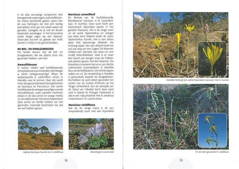 De herfstbloeiende flora van NW Marocco (Folium Alpinum 101, Februari 2011) p. 38 - 39