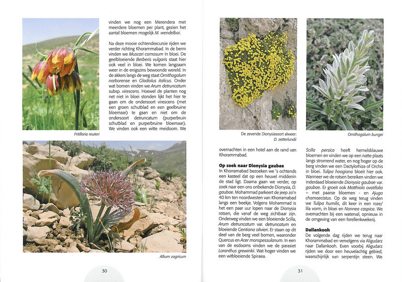 Plantenreis door Iran (NRV Folium Alpinum No. 95 May 2009 p. 30–31)