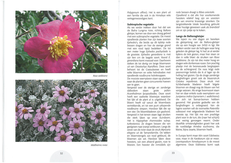 De hooggebergte flora van de Karakorum NRV Folium Alpinum 105,  page 32/33 februari 2012