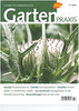 Article, Arnebia pulchra, Garten Praxis, 11-2012<br /> Photograph Marijn v.d. Brink