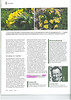 Article, Arnebia pulchra, Garten Praxis, 11-2012, page 10<br /> Photograph Marijn v.d. Brink