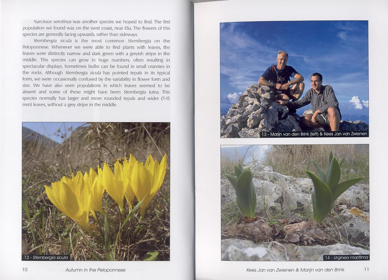 Autumn flowers of the Peloponnese (Scottish Rock Garden Club bulletin nr.115 July 2005 pag,10, 11)