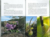 In Search of Autumn Bulbs in Morocco (Scottish Rock Garden Club bulletin nr.125 July 2010 pag. 82-83)
