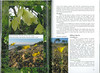 In Search of Autumn Bulbs in Morocco (Scottish Rock Garden Club bulletin nr.125 July 2010 pag. 72-73)