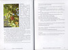 Autumn flowers of the Peloponnese (Scottish Rock Garden Club bulletin nr.115 July 2005 pag,20, 21)