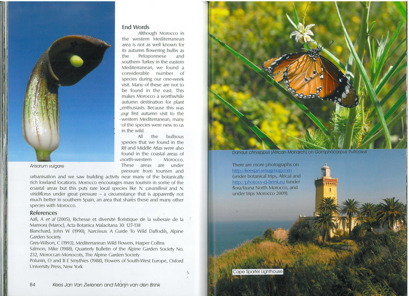 In Search of Autumn Bulbs in Morocco (Scottish Rock Garden Club bulletin nr.125 July 2010 pag. 84-85)