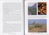 Autumn flowers of the Peloponnese (Scottish Rock Garden Club bulletin nr.115 July 2005 pag,8, 9)
