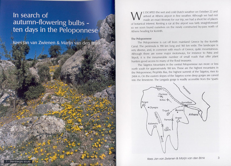 autumn flowers of the Peloponnese (Scottish Rock Garden Club bulletin nr.115 July 2005 pag,2, 3)