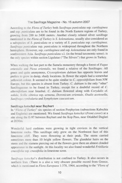 Saxifrages of Northeastern Turkey (Kristian Nyvoll, Tromso Botanic Gardens, Norway)