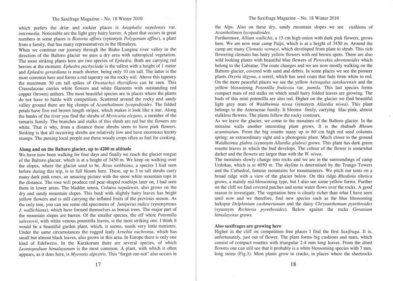 The mountain flora of the Karakorum ( Sax. Society Magazine, No 18, Winter 2010, p. 17-18)