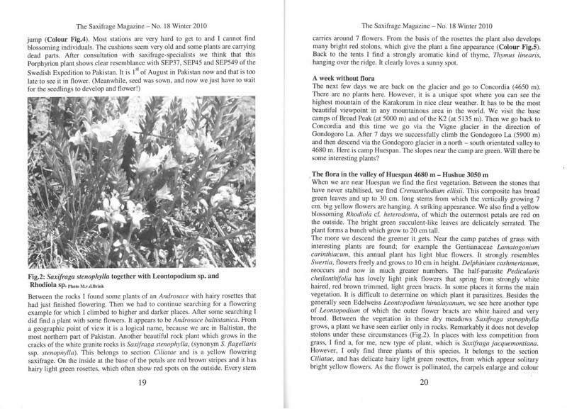 The mountain flora of the Karakorum ( Sax. Society Magazine, No 18, Winter 2010, p. 19-20)