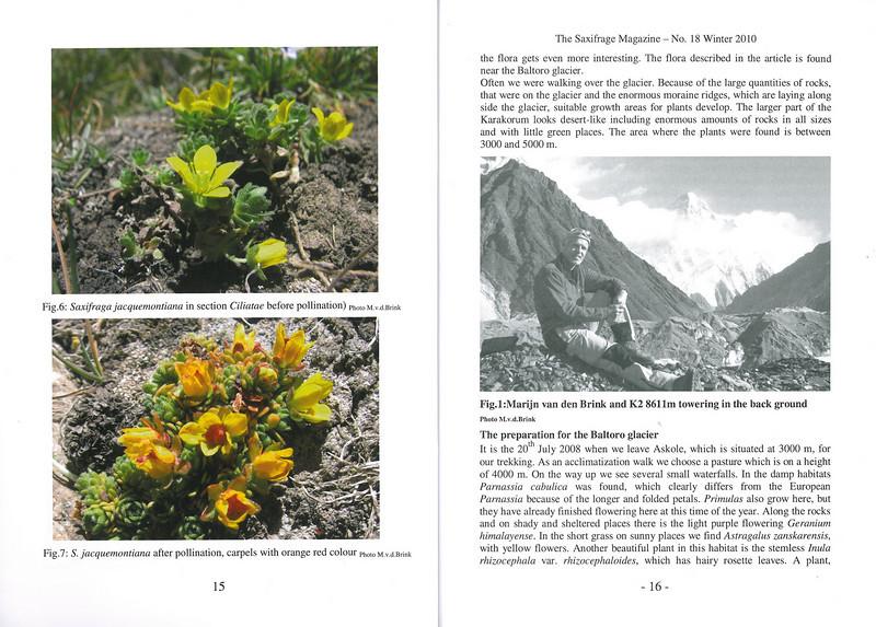 The mountain flora of the Karakorum ( Sax. Society Magazine, No 18, Winter 2010, p. 15-16)