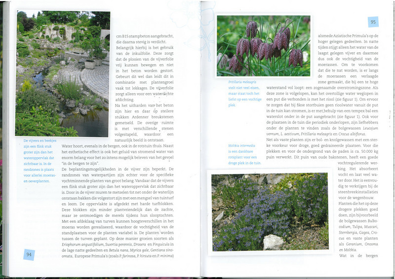 page 94-95, of the 25 years N.R.V. anniversary book: Manual for the Rockgarden N.R.V. (NL: Handboek voor de Rotstuin 2010)