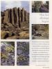 tuin&vrijetijd12.97-2 (page 13)