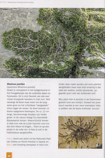 Folium Alpinum 117, pag. 30