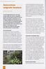 Folium Alpinum 117, pag. 28