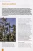 Folium Alpinum 117, pag. 22